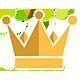 Haagse koningsdag